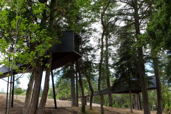 10 spectacular treehouse escapes to find solace in Pedras Salgadas treehouse Portugal 1