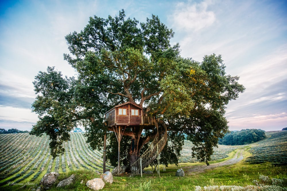 10 spectacular treehouse escapes to find solace in The Treehouse Suite Bleue La Piantata Italy