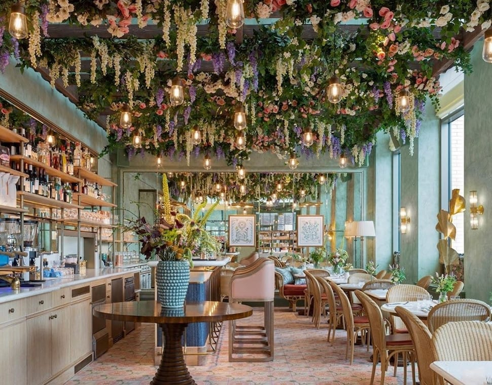 Linnaean health, beauty and lifestyle concept store in London