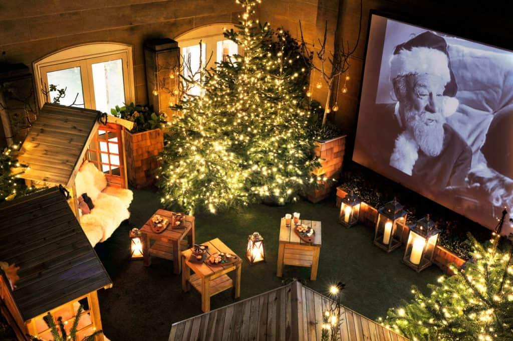 The Berkeley Winter Cinema