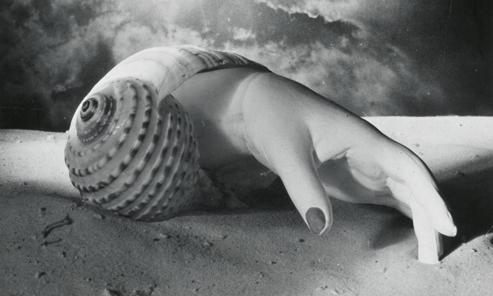 Detail of Untitled (Hand-Shell), 1934, by Dora Maar. Photograph: © ADAGP, Paris and DACS, London 2019