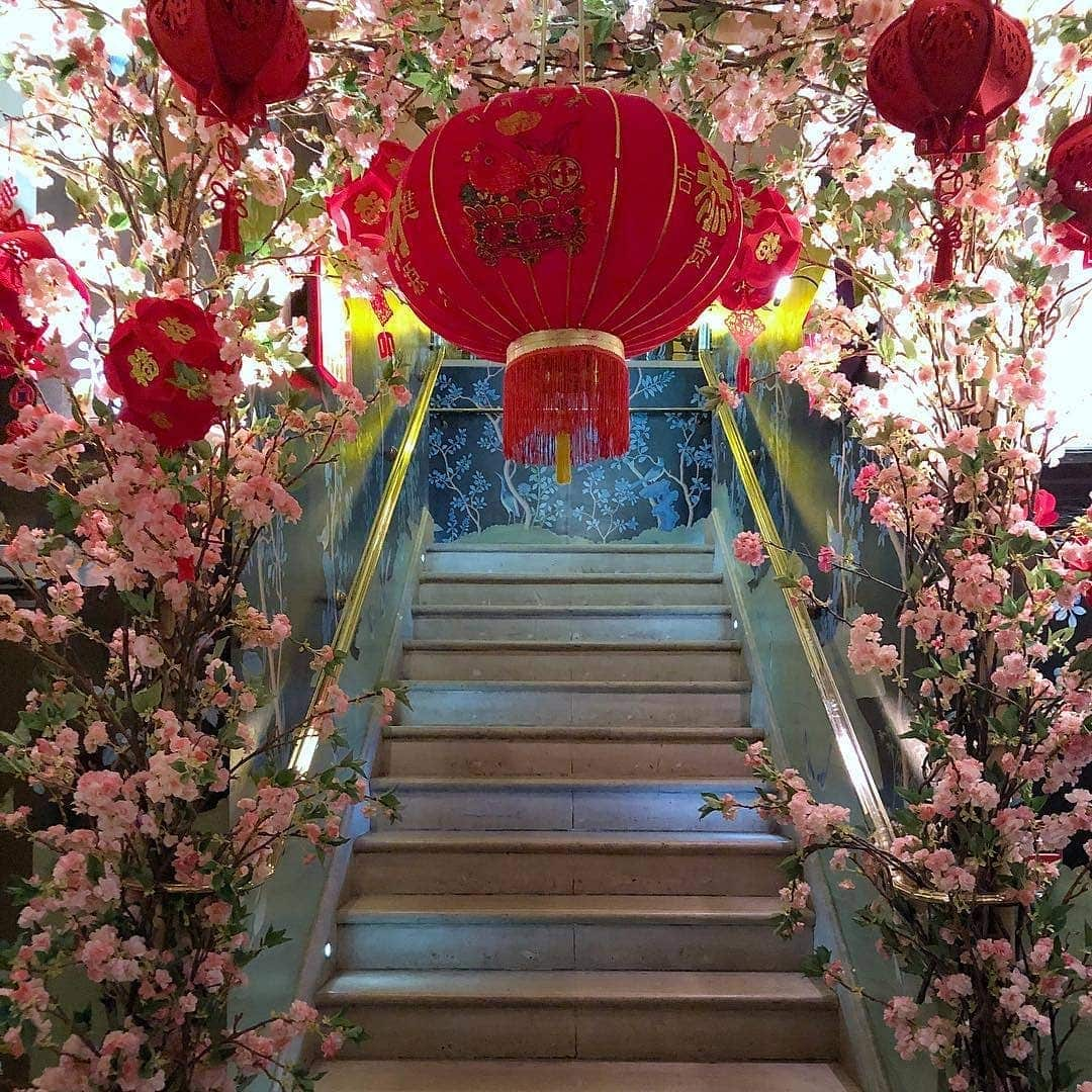 Chinese New Year at China Tang