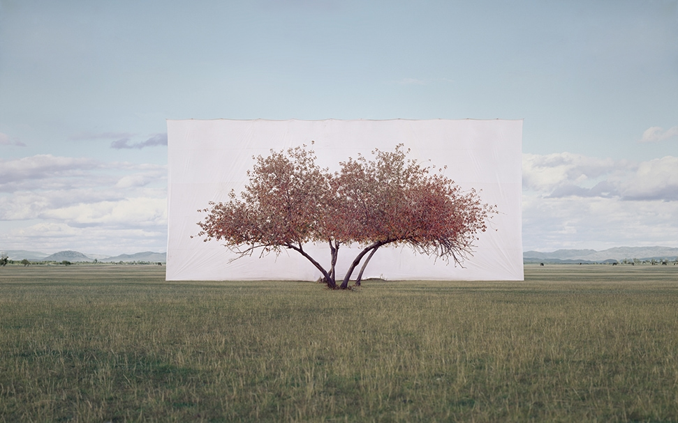 Myoung Ho Lee Tree... #2, 2012Ink on Paper 104 x 152 cm © the artist 2020 Courtesy Myoung Ho Lee and Gallery Hyundai