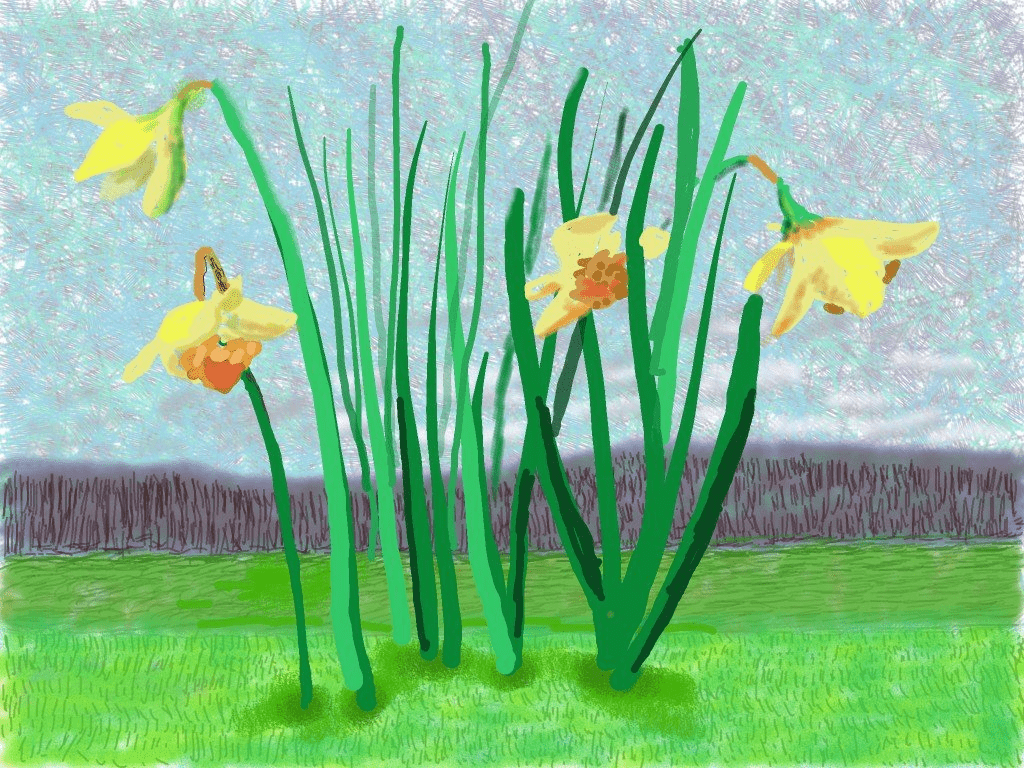 Daffodils by David Hockney