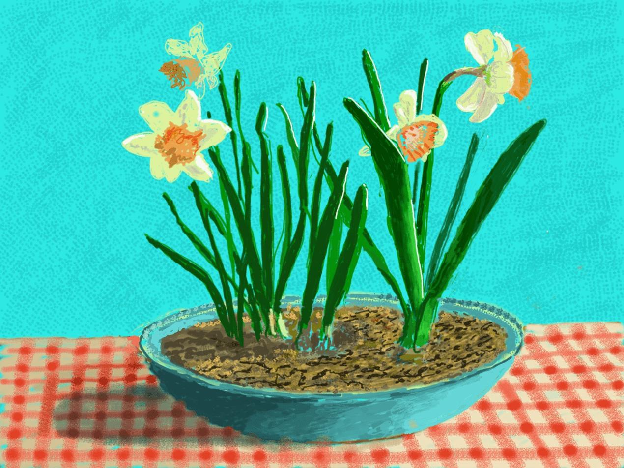 David Hockney's new iPad drawings are a joyful reminder of spring 111488591 painting01300 nc