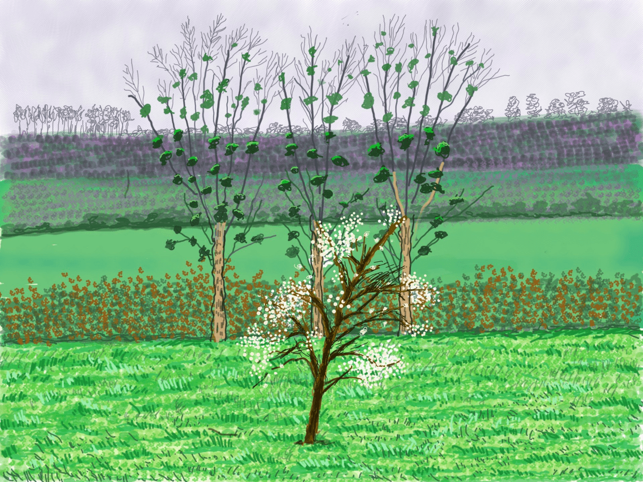 David Hockney's new iPad drawings are a joyful reminder of spring 111488592 painting0132 nc