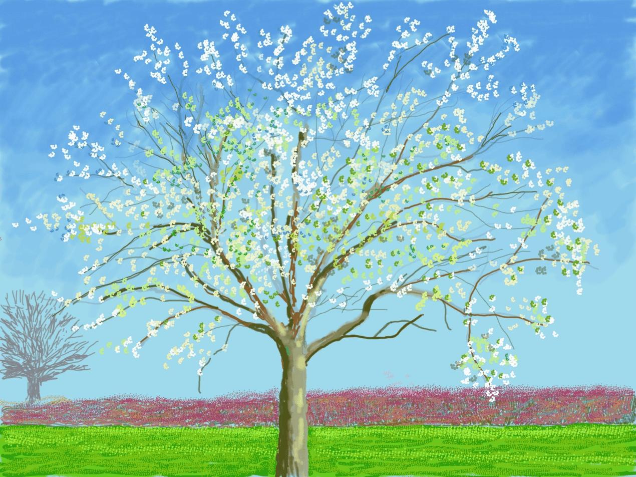 David Hockney Ipad drawings of a tree in spring bloom