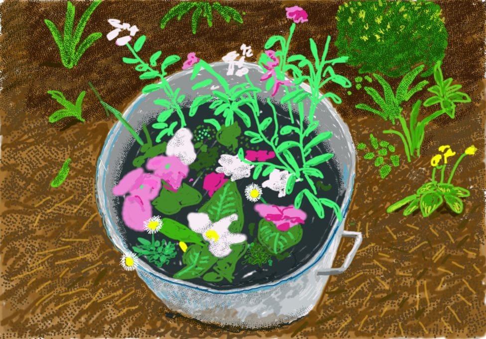 David Hockney's new iPad drawings are a joyful reminder of spring 111488651 0144 nc
