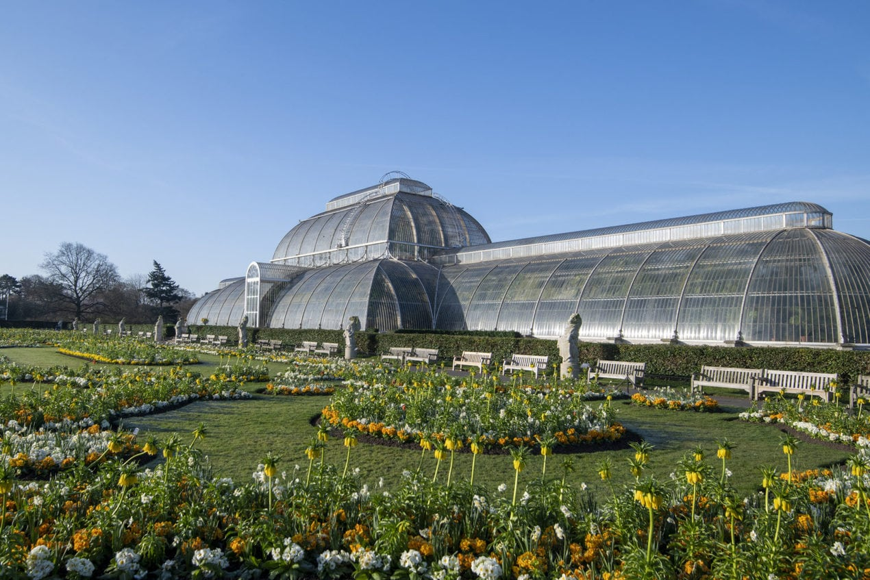Palm House in Spring 2020