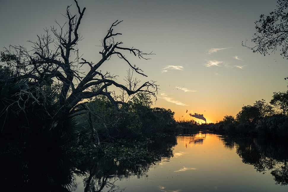 A photograph of the bayou in America for the Smithsonian Channel's film Last Call for the Bayou