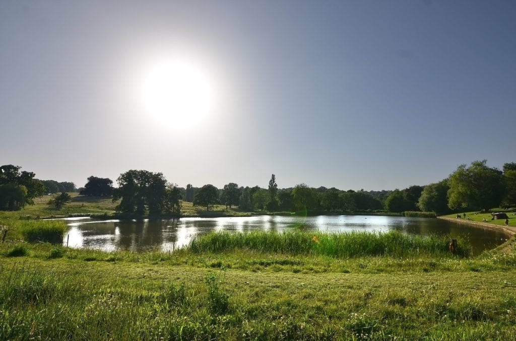 The boating pond at Hampstead Heath, one of the best walks in London