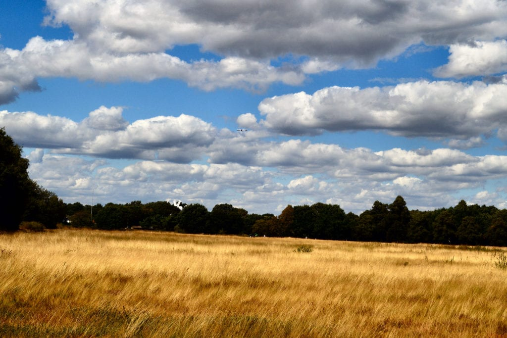 Some of the best walks in London can be found on Wimbledon Common