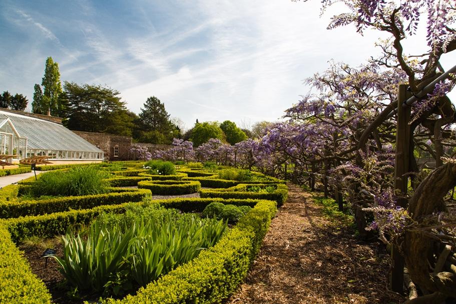 Fulham Palace knot garden credit Matthew Bruce 1