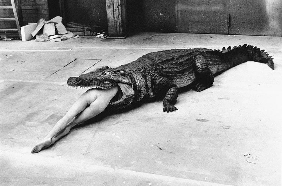 Discover The Bad and The Beautiful: Helmut Newton's life in film