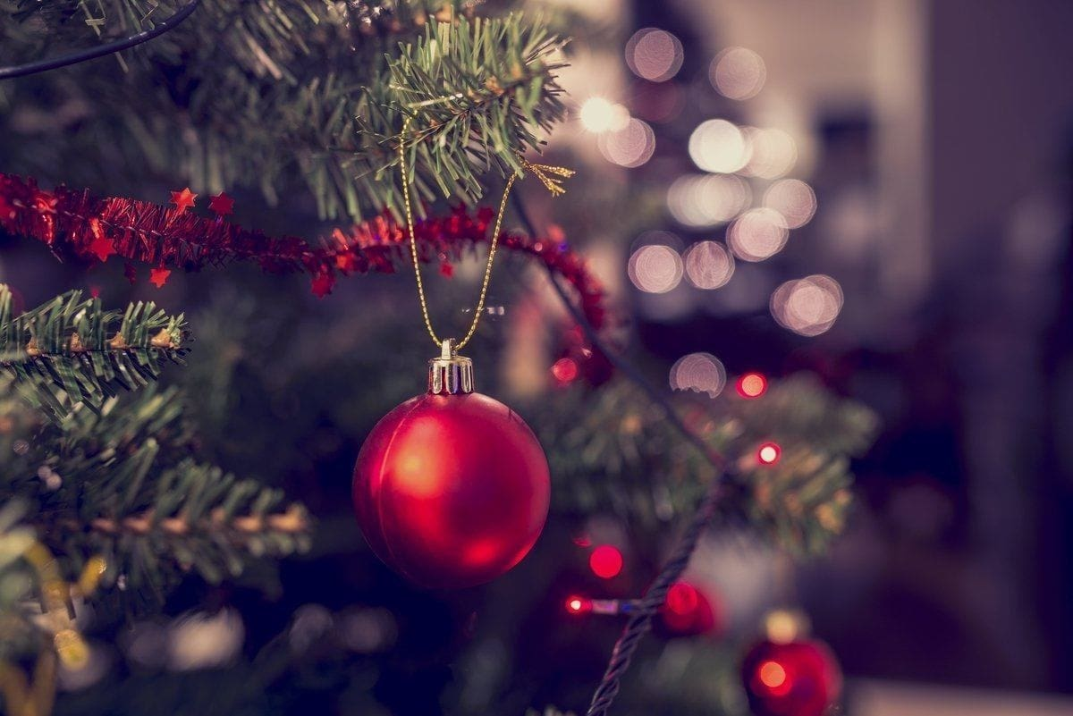 The 5 best ethical Christmas tree sellers in London to buy from Decorated Christmas Tree be8106e