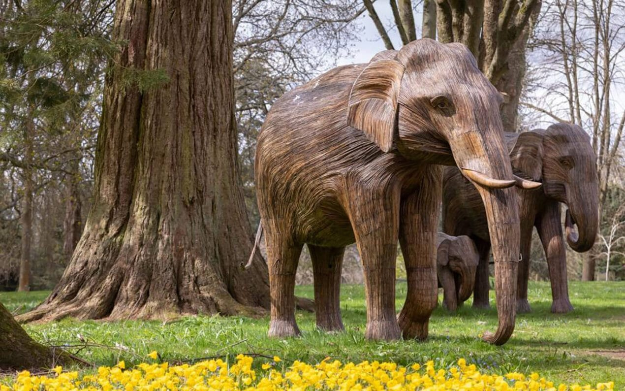 Things To Do in London in July 2021: Summer Events – CoExistence Elephant Family