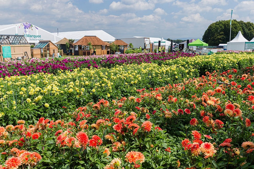 The Best Flower Shows in the UK To Visit in 2021 – RHS Flower Show Tatton Park